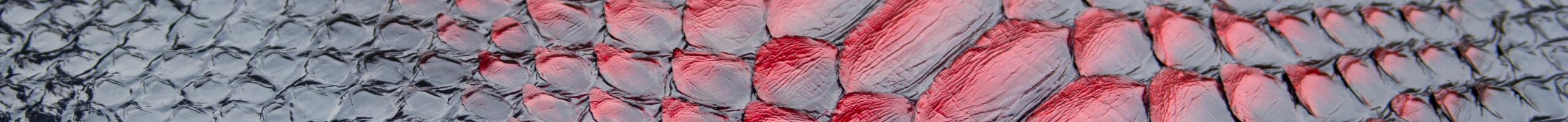 Полосы из натуральной кожи питона